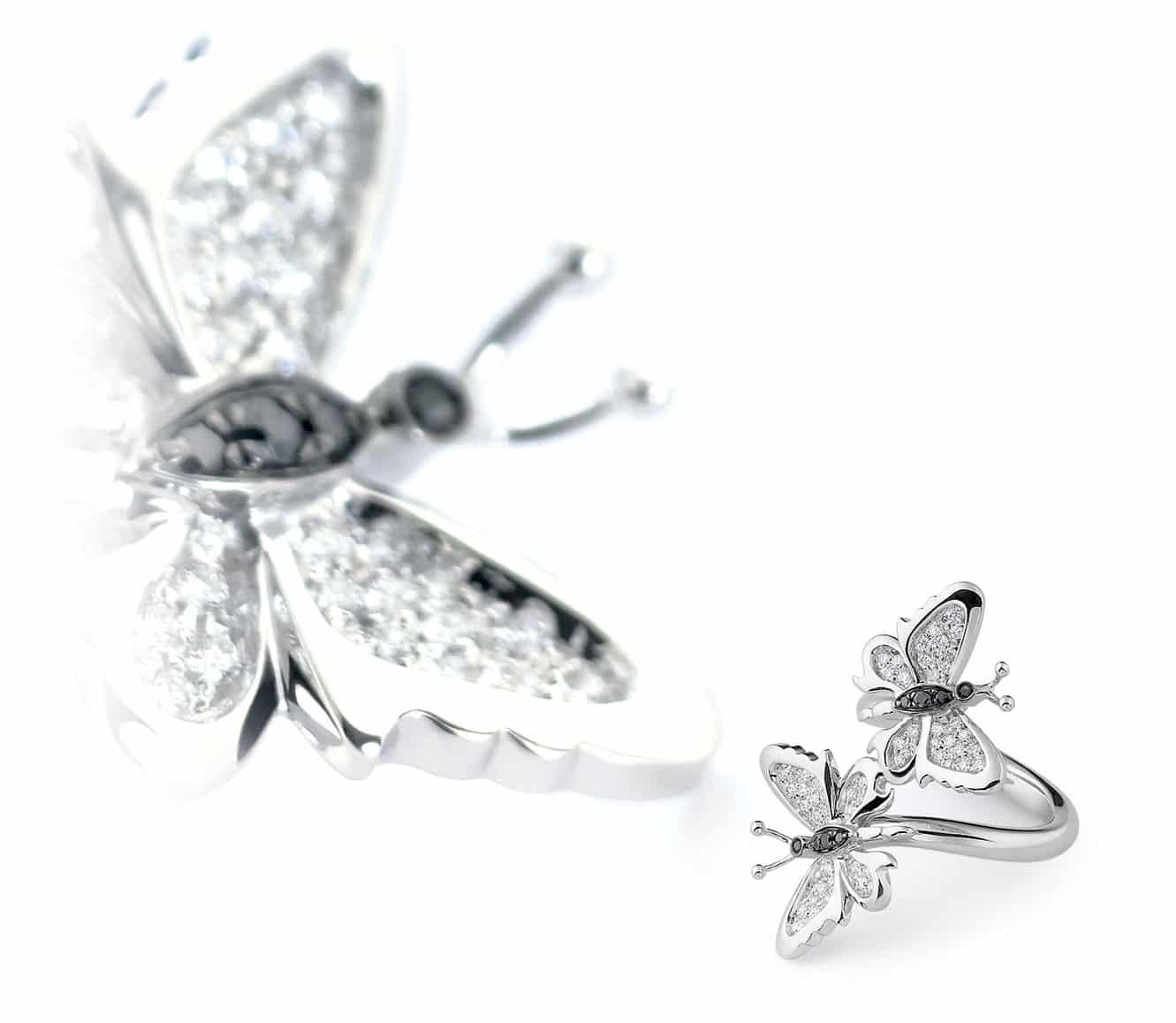 Farfalle gioiello, Collezione Butterfly